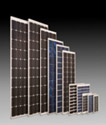 Exide Eco Poly 37Wp Solar Panel